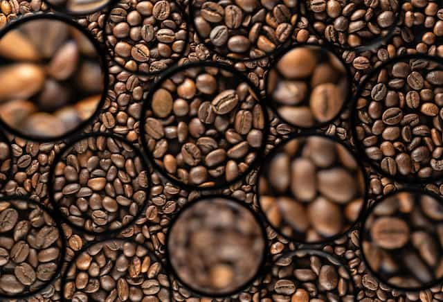 coffee beans different grades and sizes sorted